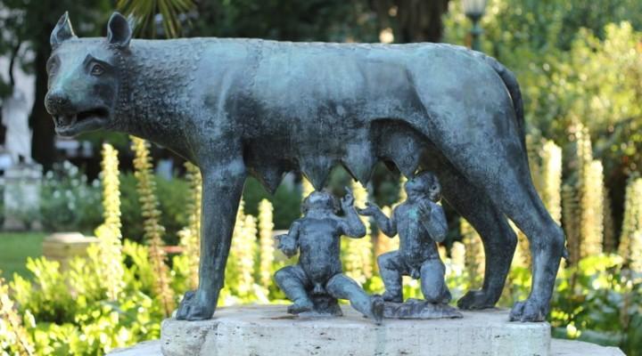 Lac lupi  –  Wolfsmilch