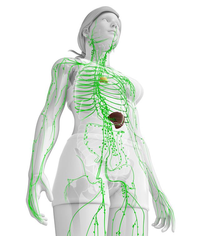 Drei Dinge die den Lymphfluss jeden Tag trainieren - Heilpraktiker ...
