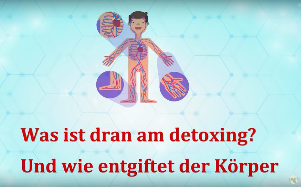 Detoxing, Detox, Entgiftung, Phase-1, Biotransformation, Enzyme, Heilpraktiker Berlin, RC-Naturheilpraxis