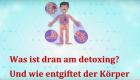 Teil 2 – Was ist dran am detoxing und wie funktioniert Entgiftung?