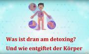 Detoxing, Detox, Entgiftung, Phase-1, Biotransformation, Enzyme,