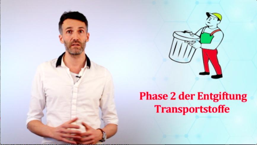 Phase-2-Entgiftung-Glutathion-SAM-Heilpraktiker-Berlin-RC-Naturheilpraxis